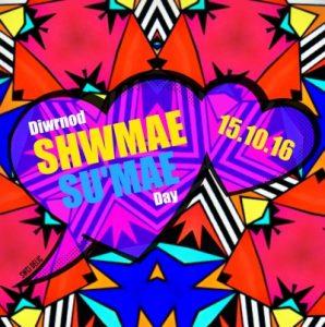 shwmae-swci2016